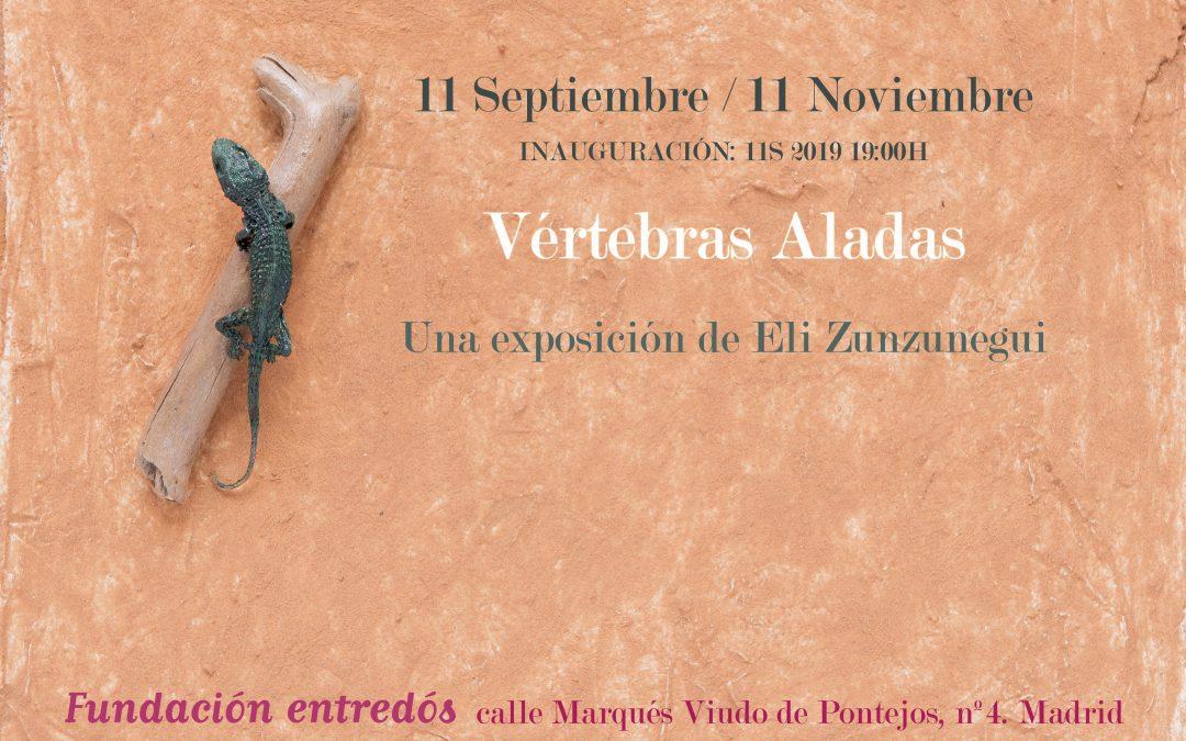 Vértebras Aladas, expo de Elisabeth Zunzunegui en Entredós